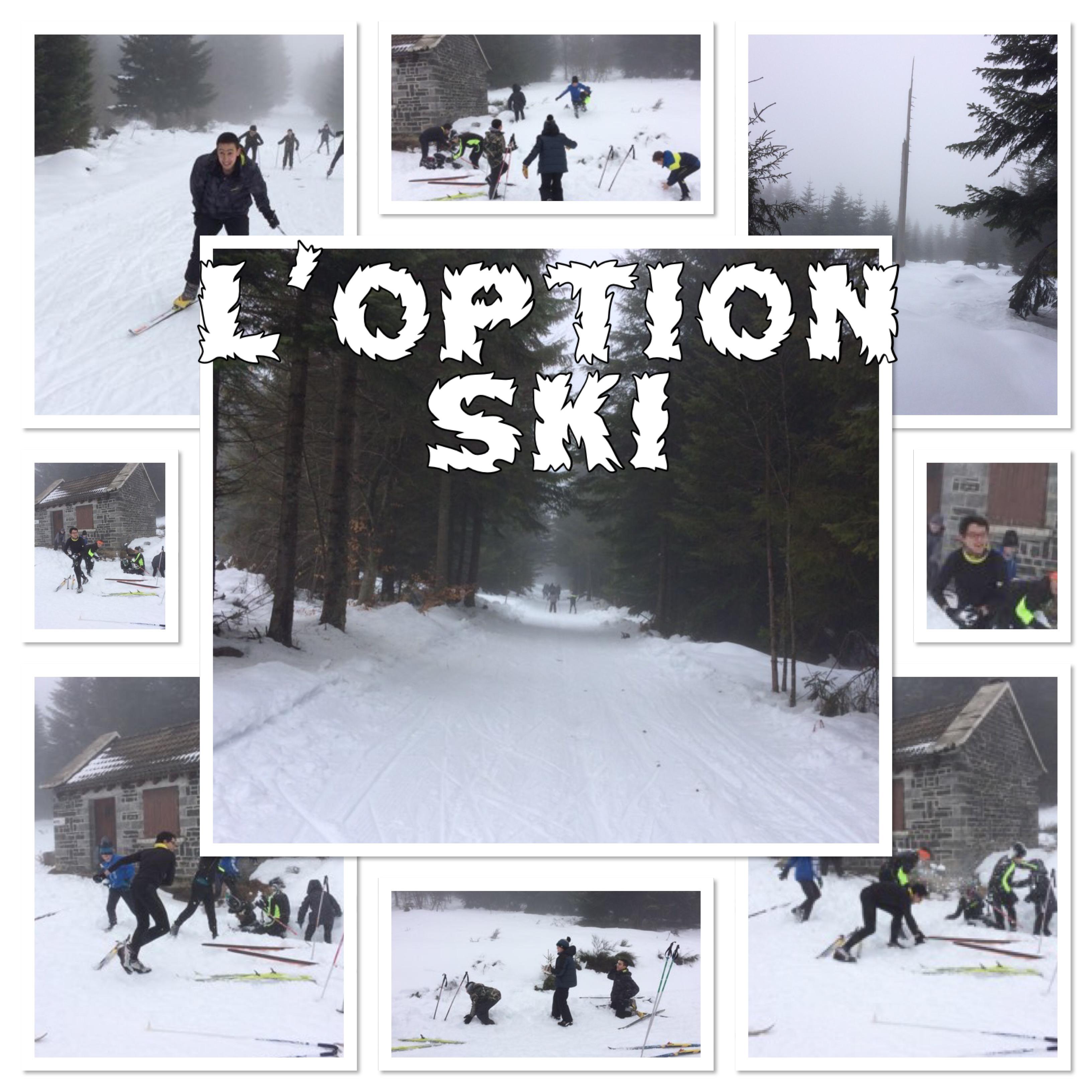 Option ski
